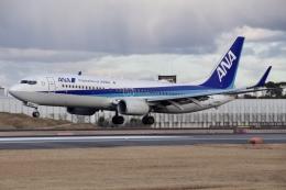 JA8943さんが、伊丹空港で撮影した全日空 737-881の航空フォト(飛行機 写真・画像)