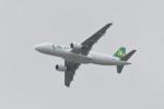 kuro2059さんが、中部国際空港で撮影した春秋航空 A320-214の航空フォト(飛行機 写真・画像)
