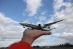 デウスーラ294さんが、伊丹空港で撮影した全日空 787-8 Dreamlinerの航空フォト(飛行機 写真・画像)
