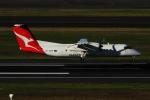twining07さんが、シドニー国際空港で撮影したカンタスリンク DHC-8-315Q Dash 8の航空フォト(飛行機 写真・画像)