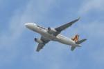 kuro2059さんが、中部国際空港で撮影したタイガーエア台湾 A320-232の航空フォト(飛行機 写真・画像)