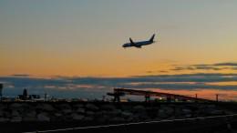 Dazhongさんが、羽田空港で撮影した全日空 787の航空フォト(飛行機 写真・画像)