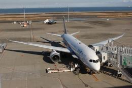 uhfxさんが、羽田空港で撮影した全日空 787-8 Dreamlinerの航空フォト(飛行機 写真・画像)