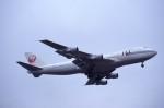 kumagorouさんが、成田国際空港で撮影した日本航空 747-246Bの航空フォト(飛行機 写真・画像)