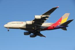 航空フォト:HL7635 アシアナ航空 A380