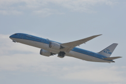 牡丹さんが、関西国際空港で撮影したKLMオランダ航空 787-9の航空フォト(飛行機 写真・画像)