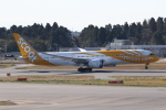 ANA744Foreverさんが、成田国際空港で撮影したスクート 787-9の航空フォト(飛行機 写真・画像)
