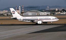 @たかひろさんが、名古屋飛行場で撮影した中国西北航空 A310-222の航空フォト(飛行機 写真・画像)