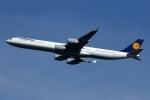 採れたてほしいもさんが、羽田空港で撮影したルフトハンザドイツ航空 A340-642Xの航空フォト(飛行機 写真・画像)