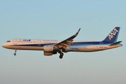 デデゴンさんが、高知空港で撮影した全日空 A321-211の航空フォト(飛行機 写真・画像)