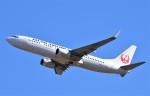 鉄バスさんが、成田国際空港で撮影した日本航空 737-846の航空フォト(飛行機 写真・画像)