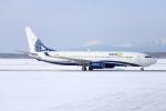 北の熊さんが、新千歳空港で撮影したマイアミ・エア・インターナショナル 737-8K5の航空フォト(飛行機 写真・画像)