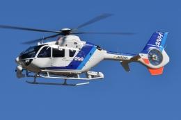 ブルーさんさんが、名古屋飛行場で撮影したオールニッポンヘリコプター EC135T2の航空フォト(飛行機 写真・画像)