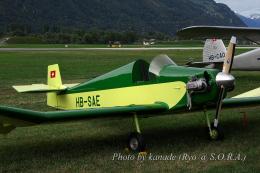 kanade/Ryo@S.O.R.A.さんが、シオン空港で撮影したAssociation pour le maintien, du Patrimoine Aéronautique D.9 Bébéの航空フォト(飛行機 写真・画像)
