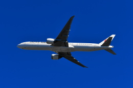 beimax55さんが、羽田空港で撮影した日本航空 777-346/ERの航空フォト(飛行機 写真・画像)