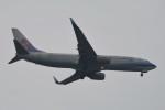 kuro2059さんが、ノイバイ国際空港で撮影したチャイナエアライン 737-809の航空フォト(飛行機 写真・画像)