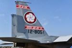 飛行機バカかもさんが、新田原基地で撮影した航空自衛隊 F-15DJ Eagleの航空フォト(飛行機 写真・画像)