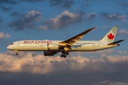 pan_kumaさんが、成田国際空港で撮影したエア・カナダ 787-9の航空フォト(飛行機 写真・画像)