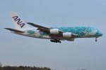 Izumixさんが、成田国際空港で撮影した全日空 A380-841の航空フォト(飛行機 写真・画像)