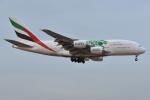 Izumixさんが、成田国際空港で撮影したエミレーツ航空 A380-861の航空フォト(飛行機 写真・画像)