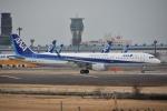 Izumixさんが、成田国際空港で撮影した全日空 A321-211の航空フォト(飛行機 写真・画像)