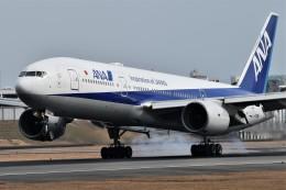 k-spotterさんが、伊丹空港で撮影した全日空 777-281/ERの航空フォト(飛行機 写真・画像)