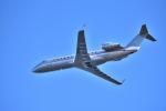 we love kixさんが、関西国際空港で撮影したビスタジェット CL-600-2B19 Challenger 850の航空フォト(飛行機 写真・画像)