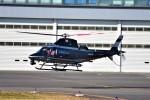 kuriko21さんが、東京ヘリポートで撮影した警視庁 A109S Trekkerの航空フォト(飛行機 写真・画像)