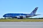 ちかぼーさんが、ダニエル・K・イノウエ国際空港で撮影した全日空 A380-841の航空フォト(飛行機 写真・画像)