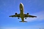 Jin Bergqiさんが、伊丹空港で撮影した全日空 A320-211の航空フォト(飛行機 写真・画像)