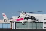 KAZFLYERさんが、東京ヘリポートで撮影した東邦航空 AS365N2 Dauphin 2の航空フォト(飛行機 写真・画像)