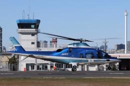 KAZFLYERさんが、東京ヘリポートで撮影した日本デジタル研究所(JDL) A109E Powerの航空フォト(飛行機 写真・画像)