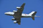 SKY☆101さんが、鹿屋航空基地で撮影した海上自衛隊 P-1の航空フォト(飛行機 写真・画像)