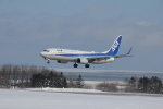 hiro-1901さんが、紋別空港で撮影した全日空 737-881の航空フォト(飛行機 写真・画像)