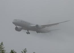 銀苺さんが、成田国際空港で撮影したアメリカン航空 787-9の航空フォト(飛行機 写真・画像)