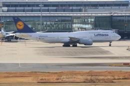 airdrugさんが、羽田空港で撮影したルフトハンザドイツ航空 747-830の航空フォト(飛行機 写真・画像)