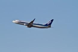 344さんが、福岡空港で撮影した全日空 737-881の航空フォト(飛行機 写真・画像)