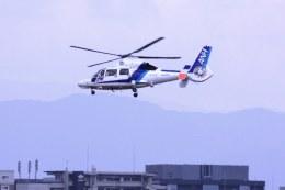 けいとパパさんが、福岡空港で撮影したオールニッポンヘリコプター AS365N3 Dauphin 2の航空フォト(飛行機 写真・画像)