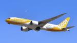 パンダさんが、成田国際空港で撮影したスクート 787-8 Dreamlinerの航空フォト(飛行機 写真・画像)