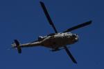 350JMさんが、厚木飛行場で撮影したアメリカ海兵隊 UH-1Yの航空フォト(飛行機 写真・画像)