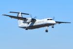あきらっすさんが、調布飛行場で撮影した国土交通省 航空局 DHC-8-315Q Dash 8の航空フォト(飛行機 写真・画像)