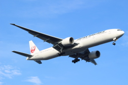 エアさんが、羽田空港で撮影した日本航空 777-346/ERの航空フォト(飛行機 写真・画像)