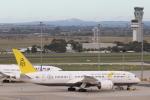 安芸あすかさんが、メルボルン空港で撮影したロイヤルブルネイ航空 787-8 Dreamlinerの航空フォト(飛行機 写真・画像)