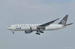 やまちゃんKさんが、那覇空港で撮影した全日空 777-281の航空フォト(飛行機 写真・画像)