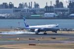 ぬま_FJHさんが、羽田空港で撮影した全日空 787-8 Dreamlinerの航空フォト(飛行機 写真・画像)