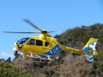 ランチパッドさんが、静岡ヘリポートで撮影した中日本航空 EC135P2+の航空フォト(飛行機 写真・画像)