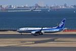 ぬま_FJHさんが、羽田空港で撮影した全日空 737-8ALの航空フォト(飛行機 写真・画像)