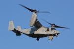 nobu_32さんが、厚木飛行場で撮影したアメリカ海兵隊 MV-22Bの航空フォト(飛行機 写真・画像)