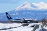にしやんさんが、釧路空港で撮影した全日空 737-8ALの航空フォト(飛行機 写真・画像)