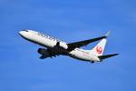 beimax55さんが、羽田空港で撮影した日本航空 737-846の航空フォト(飛行機 写真・画像)